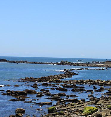 犬吠埼から見える海の写真